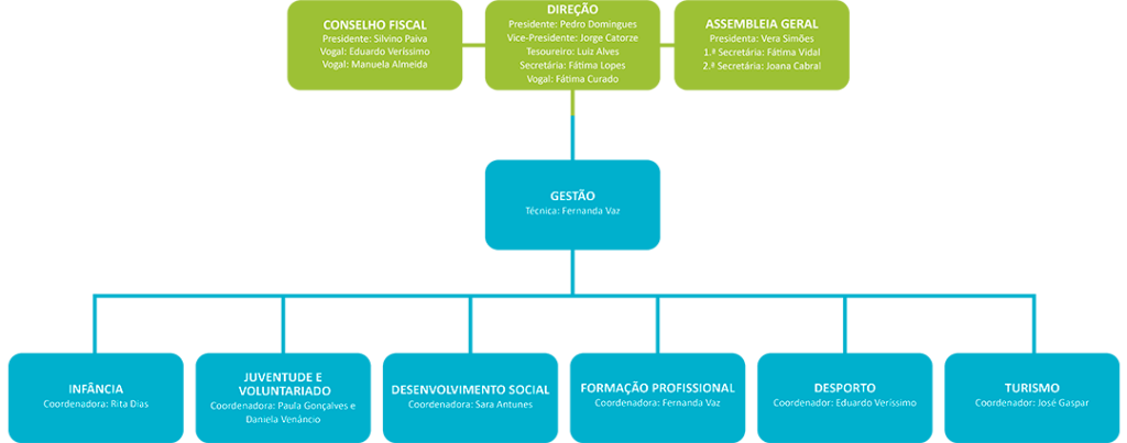 organograma-activar